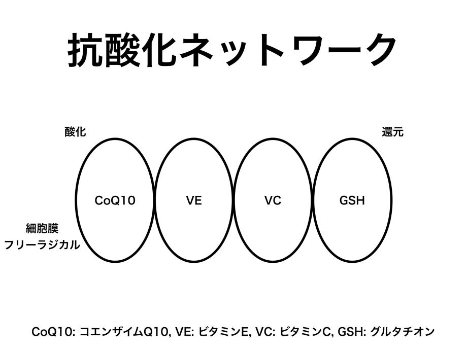 抗酸化ネットワーク、CoQ10, VitaminE, VitaminC, GSH